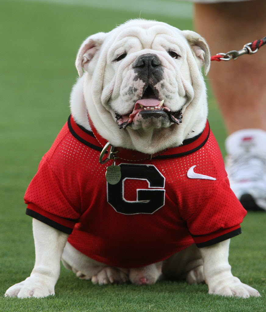 SabertStxVii BCS Title Future #1: Georgia Bulldogs