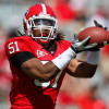 Georgia replacements for projected 2013 NFL first round draft choices