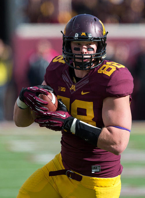 Minnesota tight end Maxx Williams (Jesse Johnson-USA TODAY Sports)